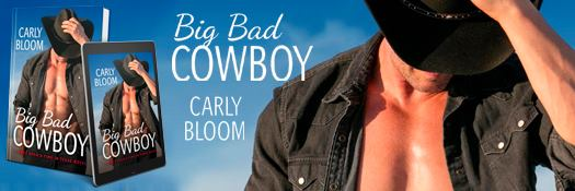 Author Carly Bloom Books link